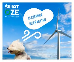 Dzień wiatru - Świat OZE